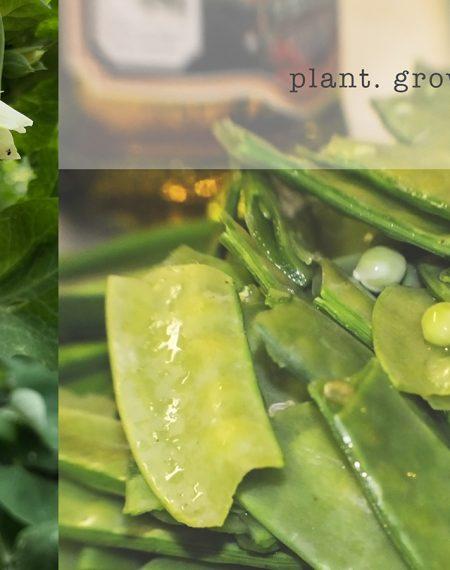 plant. grow. eat.